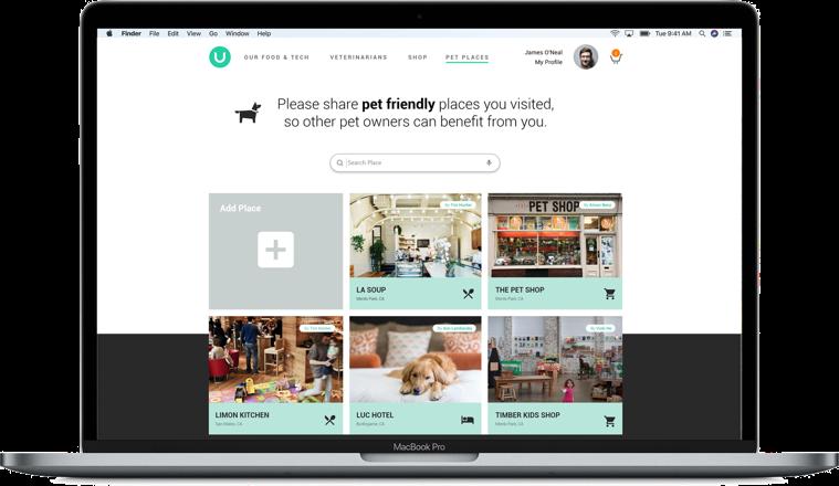 UX design for pet app