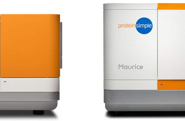protein simple family brand language